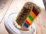 Midleton Distillery Bakery Roadshow Rainbow Cake